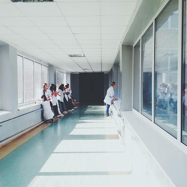 clinica-dandelion01